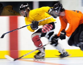 Program Adult Dek Hockey Leagues