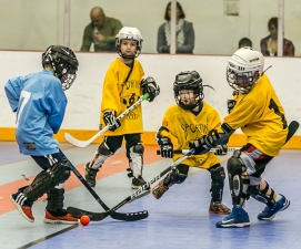 Program Youth Dek Hockey League
