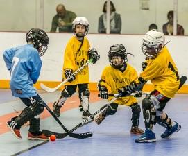 Program Youth Dek Hockey League
