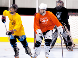 Program Adult Roller Hockey Leagues