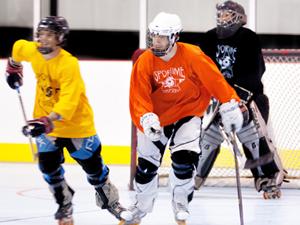 Program Adult Roller Hockey Leagues